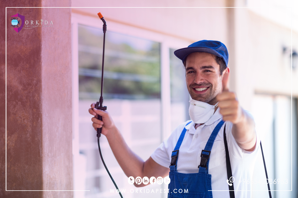 Pest Control Services - Are you looking for a distinct and reliable counter service?