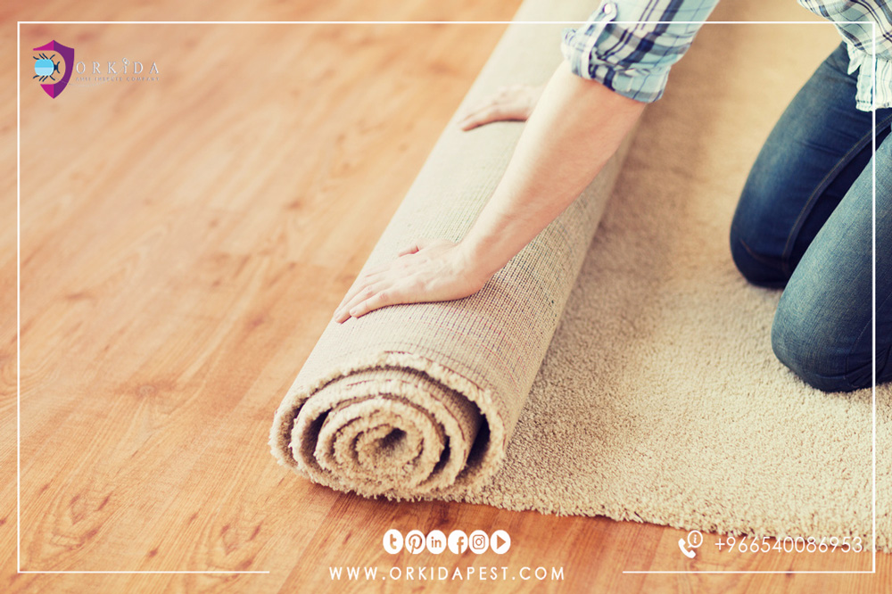 How to clean carpet without water - Can carpet cleaning at home without chemicals?