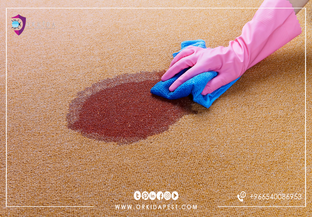 How to clean carpets without washing - Can carpet cleaning from hard spots on dry without chemical products?