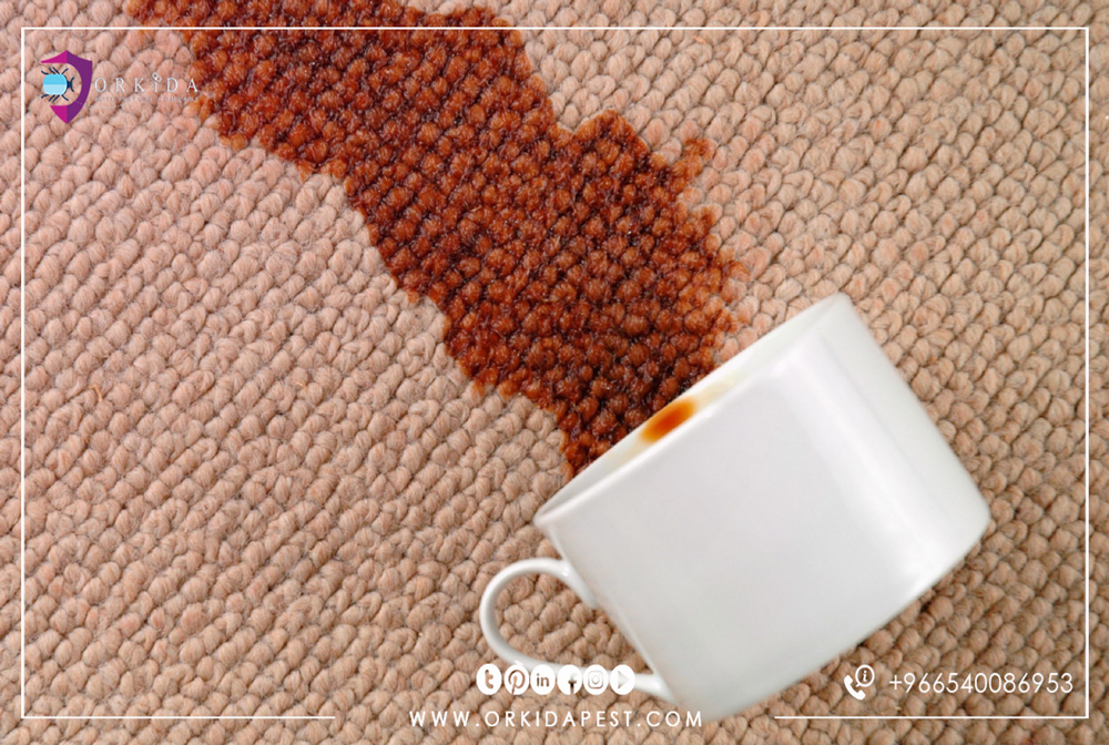 Carpet cleaning of old stains - you will not spend a lot of money on cleaning carpet stains with simple steps