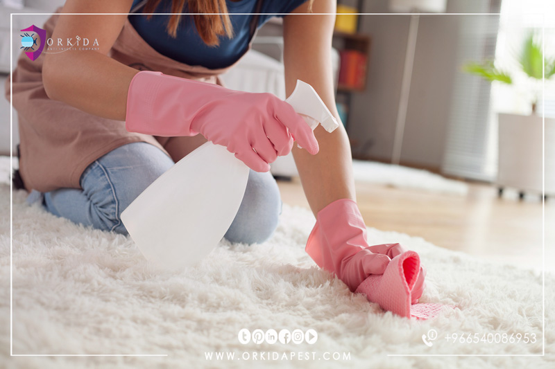 Cleaning stains from carpet - ideas for carpet cleaning and protection from hard spots