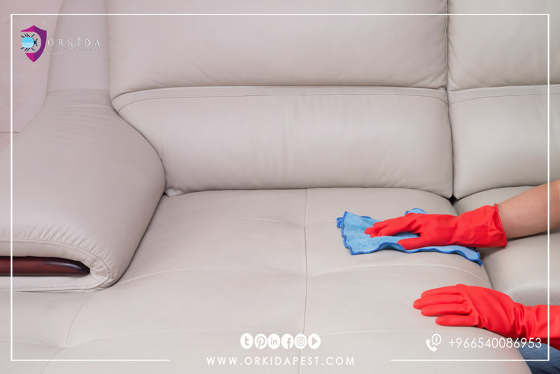 How to clean the sofa and remove stains without using harmful chemicals: