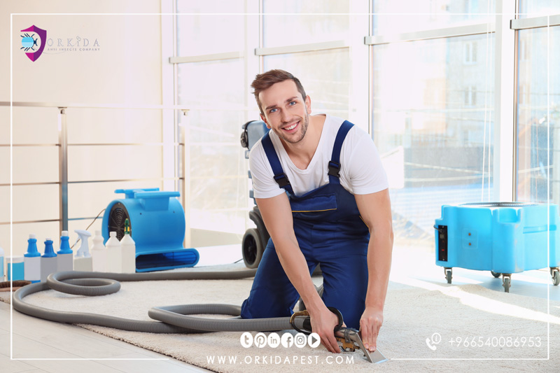 Carpet steam cleaning company in Jeddah - What is the difference between dry cleaning and carpet cleaning?