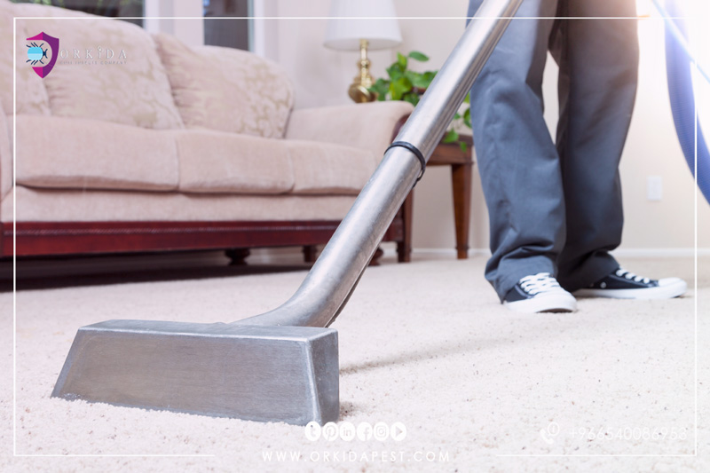 Carpet Washing Company in Jeddah - Use steam cleaning instead of the traditional methods of cleaning the carpet